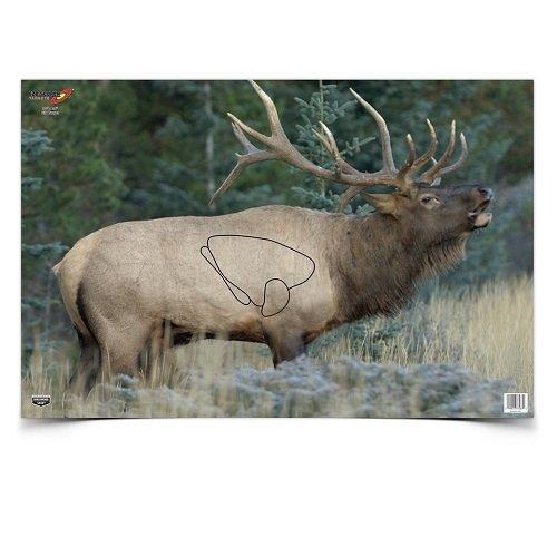 image about Deer Vitals Target Printable named DeadBullsEye