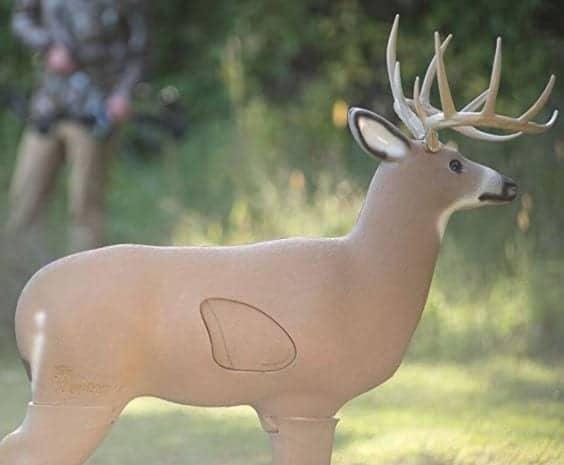 Big Shooter Buck 3D Archery Target